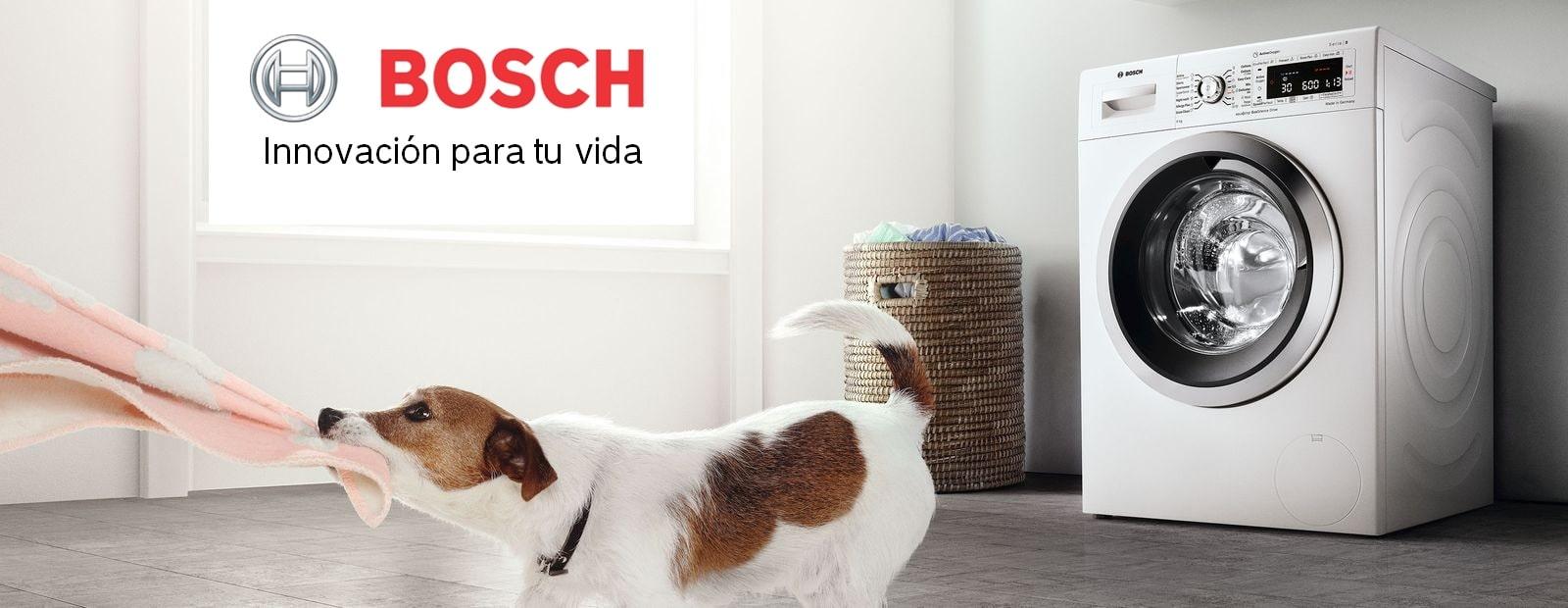 Electrodomésticos Bosch selección